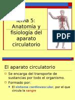 aparato_circulatorio [Autoguardado]