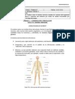 Guia N°1 2°Medio B (biología) -  Unidad 1 - Cordinación y regulación