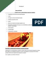 Referat Anatomie.doc