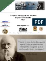 1291_elton_fagundes