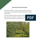Análisis del poema jardín del plante