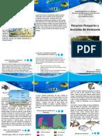 Triptico/Folleto Sobre los Recursos pesqueros y Acuicolas en Venezuela