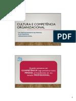 Cultura e Competência Organizacional