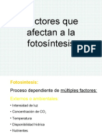 Factores que afectan a fotosintesis.pdf