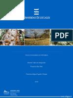 Informe Taller de Integracion Francisco Aguilar.docx
