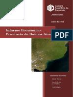 46_informe provincia de bs. as. VER.pdf