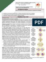 Guía Procesos de División de Las Células Eucariotas en Organismos Complejos.