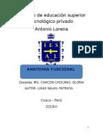 102043692-monografia-aparato-respiratorio.docx