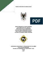 TRABAJO-ENCUESTAS-DOMICILIARIAS.docx