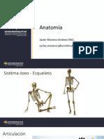 Uniminuto Anatomía 4