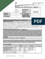Formato para el Desarrollo del PSA FINAL (1)