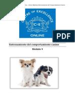 Comportamiento Canino - Módulo 9