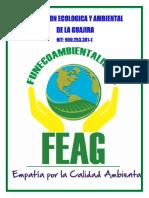 PORTAFOLIO DE SERVICIOS FEAG original