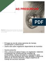 g Quemas prescritas_viv_u_ref[85].pdf