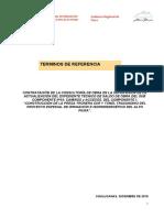 TDR SUPERVISION  DEL EXP TECNICO - CAMINOS DE ACCESO modificado.docx