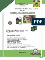 proyectook2017.doc