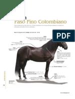medidas de caballos(1)