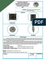 protozoa dan foraminifera bentonik besar.pdf