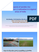Prospects of Aerobic Rice Cultivation in Irrigated Areas of India