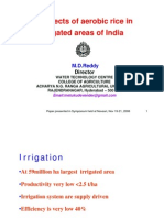 Prospects of Aerobic Rice in Irrigated Areas of India