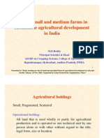 Role of Small and Medium Farms in Sustainable Agricultural Development in India