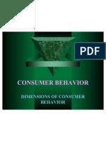 Consumer Behaviour 1