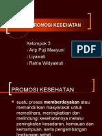 KONSEP PROMKES KEL 3.ppt