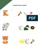 Ce Mănâncă Fiecare Animal