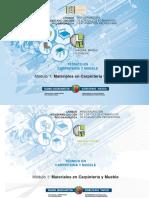 MODULO DE CARPINTERIA.pdf