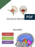 6ºformaciones Diencefálicas Modificado