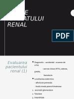 Bolile aparatului renal