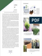 Film Farming.pdf