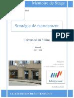 Strg rec.pdf