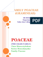 PowerPoint presentation on POACEAE for all Botany BSCII studentsompressed