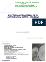 anatomia artroscopica glenohumeral ivss