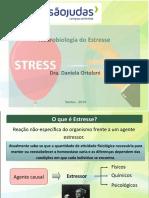 AulaEstresse_20190609131034.pptx