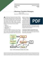 practical business strategies turnaround.pdf