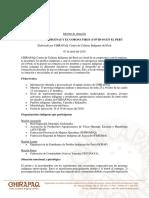 LOS PUEBLOS INDÍGENAS Y EL CORONAVIRUS (COVID-19) EN EL PERÚ