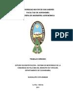 TD-1607palcoma.pdf