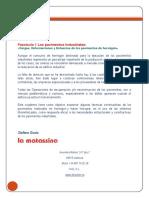 1fascculopavimentosindustrialesfibroreforzados-121221132732-phpapp02.pdf