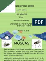 trabajo de yeni bareño (1) de parasitologia.pptx