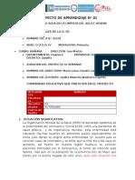 PROYECTO DE APRENDIZAJE Nº 01