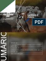 Agronegocio - Caprinos e ovinos - SEBRAE