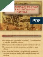DEVOIR MAISON UE 10 PARTIE 2 QCMs .pdf