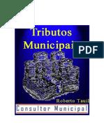 03 - TRIBUTOS MUNICIPAIS
