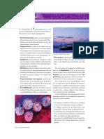 Tipologia pregunta-3.pdf