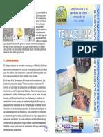 10-2008-8-841.pdf