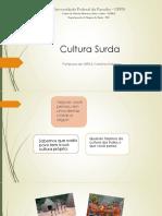 9_aula_-_Identidade_e_Cultura_Surda.pdf