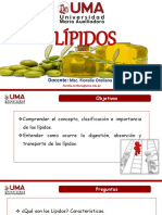 Lípidos bioquimica