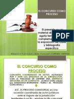 BOLILLA   2.1. y 2.3 UAA CONCURSO COMO PROCESO  PRINCIPIOS PROCESALES...ETC   2020 DRA CARRARA